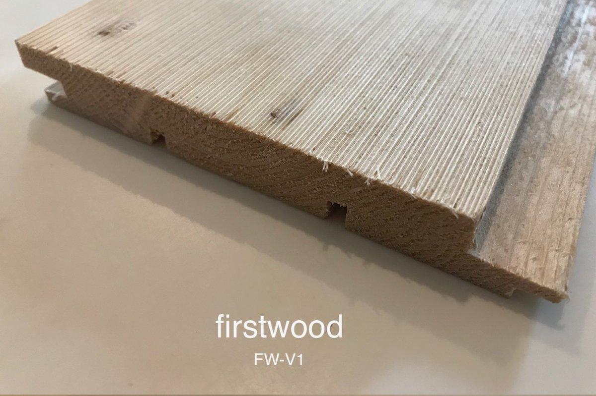 FW-V1