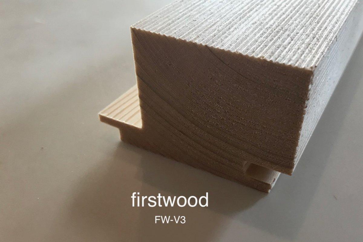 FW-V3